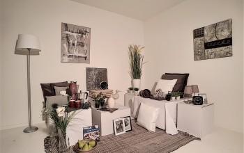 Meubels + deco voor EK, WK, 2p SLPK incl decoratie voor BK & keuken (140 stuks)