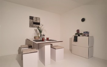 Whole house (living, dining, master) to rent